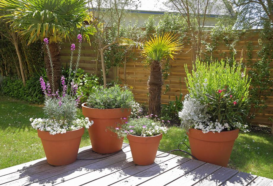 Concours balcon et jardin fleuris