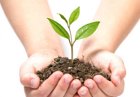 Règlementation environnementale